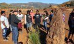 Sur la piste des pétroglyphes | Collège | ARP